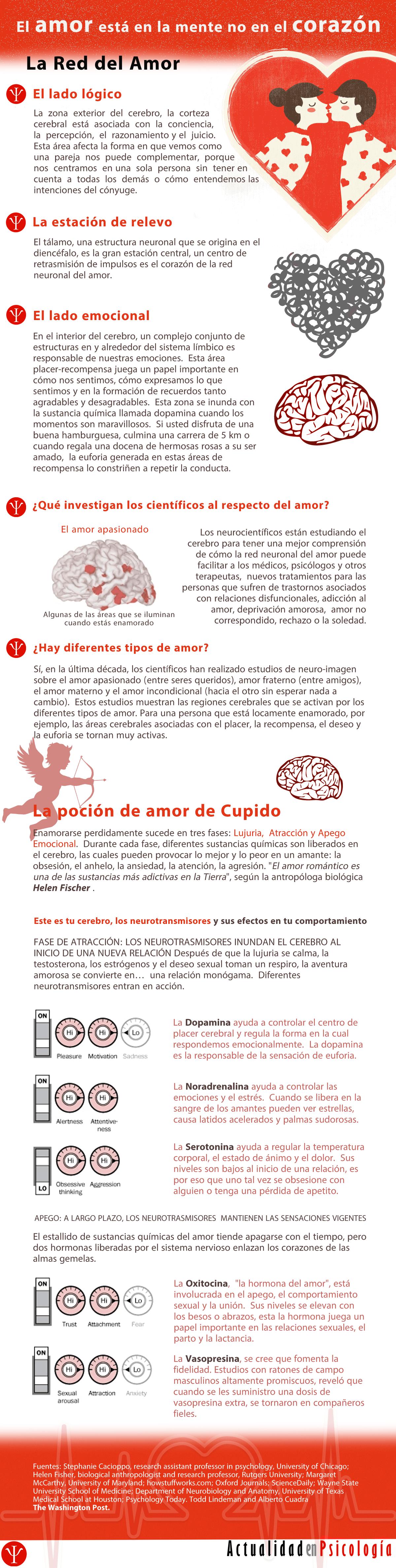 el_amor_esta_en_la_mente_no_el_corazon