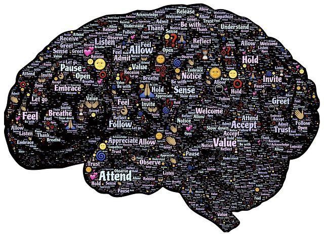 Descubren en el hipocampo un mapa para la navegación social
