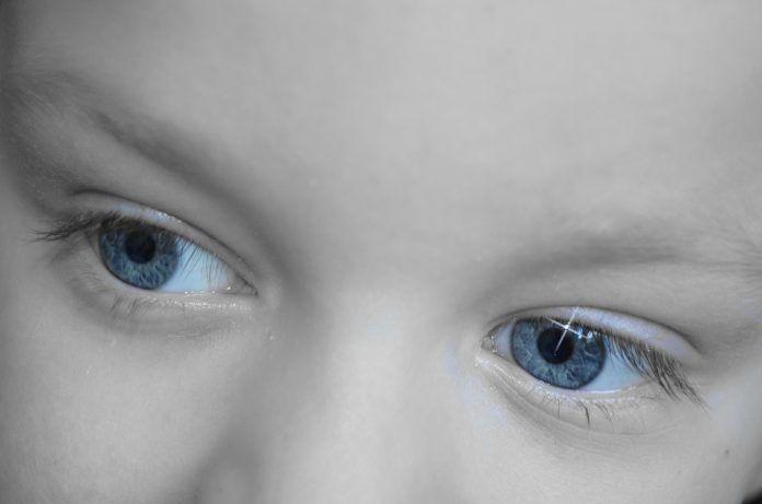 Señales de alerta y recomendaciones en el Trastorno del Espectro Autista