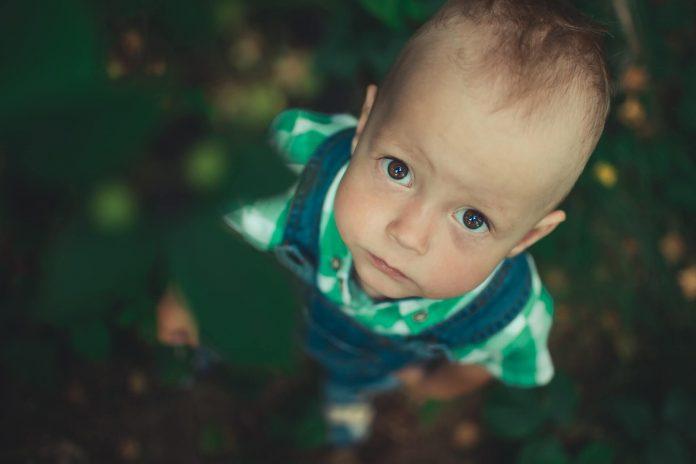 Hablantes tardíos: niños con retraso inicial de lenguaje