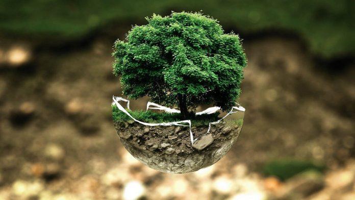 ¿Puede la psicología ayudar a salvar el medio ambiente?